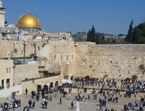 Israel 2017