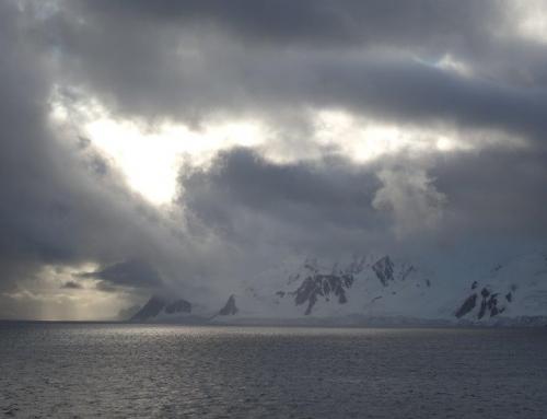 Antarktis, Falkland und Chile 2020